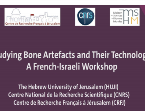 Study Bone Artefacts and Their Technology – February 24-25-26th